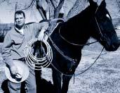 Bret Whipple, horse